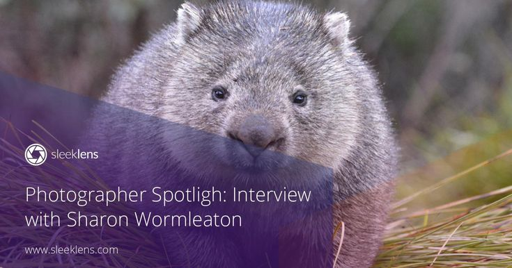 Welcome to another episode of Photographer Spotlight! Sharon Wormleaton is a gifted photographer from Australia. Get to know all her tips and tricks.