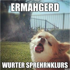 Ermahgerd: Water Sprinkler, Funny Dogs, Hot Summer Day, The Faces, Funny Stuff, Dogs Pictures, Hot Day, So Funny, Dogs Faces