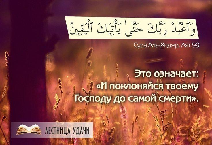 тп ьптпр