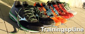 Trainingsplan erstellen