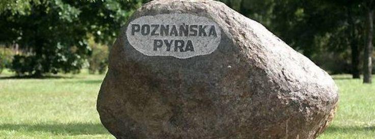 MOIM DZIECIAROM | Fajna gwara poznańska