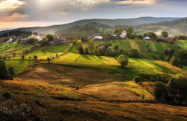 Bucovina Region
