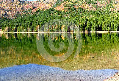Lake in Roumania withe lovely autumn colors   forests around the lake  pastoral surroundings with clear reflection on the water
