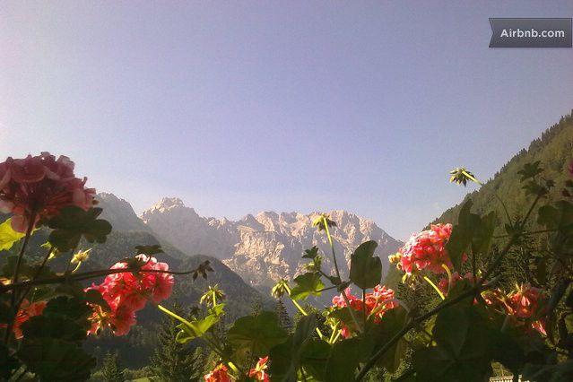 summer in Logarska Dolina ...