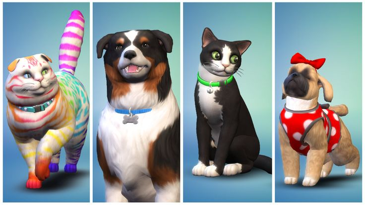 'The Sims 4 Cats & Dogs' promises biggest-ever pets expansionIn the close-to-three years since its release on PC The Sims 4 has broken down gender barriers freed itself from the shackles of the suburbs and even found time to cater to Mac and console gamers. But there's been something amiss from the lives o... Credit to/ Read More : http://ift.tt/2wgMOiu This post brought to you by : http://ift.tt/2teiXF5 Dont Keep It Share It !!