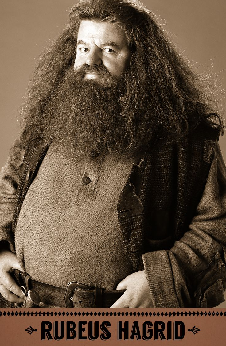Rubeus Hagrid, Care of Magical Creatures professor, Keeper of Keys and Grounds at Hogwarts. I love him.