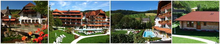 Wellness Hotel Ludinmühle, Brettental Black Forest