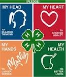 The 4 H's.....