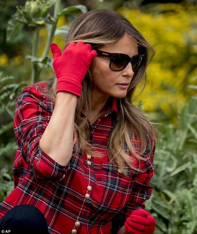 At one point, Melania used her gloved hand to tuck her long hair behind her ear ... Melania paired her red plaid shirt with dark skinny jeans and $50 blue Converse Chuck Taylor shoes. White House Garden Welcome Autumn Autumnal Equinox Sept 22 2017