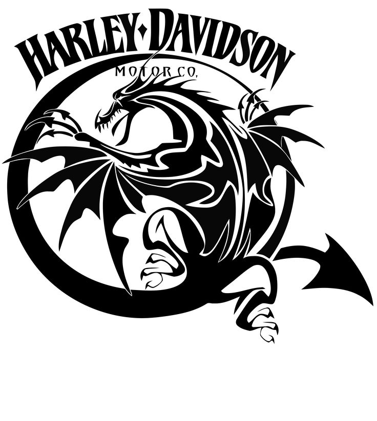 Best Anything Harley Davidson Images On Pinterest Harley - Stickers for motorcycles harley davidsonsharley davidson tank decals stickers graphics johannesburg