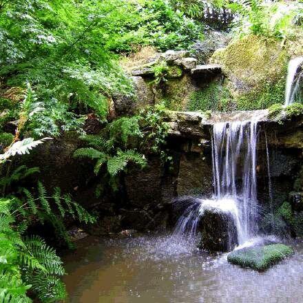 Kebun dan kolam pancuran air