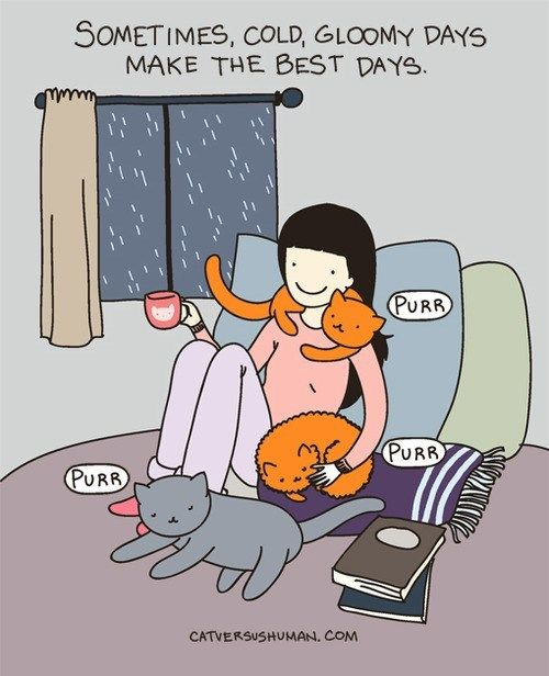 Especially with a good book and a cat