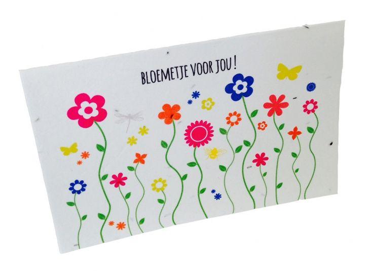 Bloemetje voor jou! Stuur een bloemetje per post! In deze kaart zijn veldbloemzaadjes verwerkt. Bedek met een dun laagje aarde en houd dit vochtig tot de zaadjes beginnen te kiemen. En voor je het weet kun je genieten van een vrolijk gekleurde bloemenzee! - € 2,95