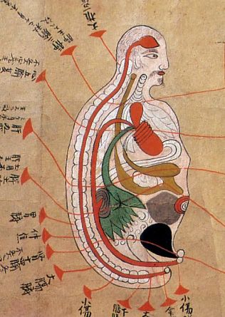 Anatomical illustrations from Edo-period, Japan (1603-1868)