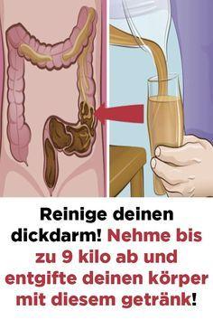 Der wahre Grund, warum Ihr Bauch aufgetrieben ist und wie Sie ihn reparieren können – Renate Kuscher