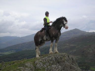 Cumbrian Heavy Horses - 6 day pack trips through the UK Lake District riding Clydesdales and Shire horses.  I am SO there!!