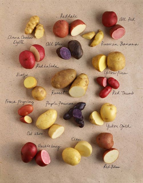 Potato Varieties. The purple have always been my favorite.