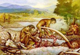 Vivere 700.000 anni fa: il sito paleolitico di Isernia La Pineta Museo Nazionale del Paleolitico di Isernia www.archeologicamolise.beniculturali.it/
