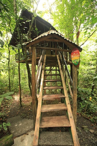 457 best treehouse life images on pinterest treehouses for Tree house costa rica