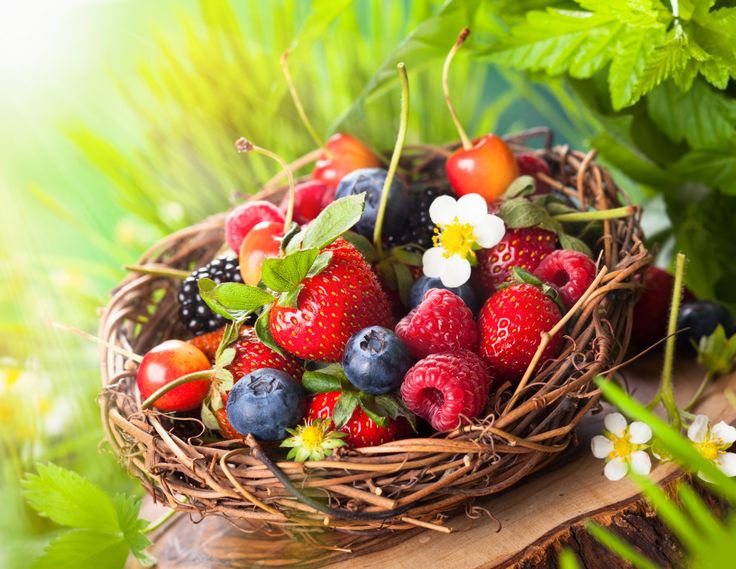 A Basket of Summer Berries puzzle in Fruits & Veggies jigsaw puzzles on TheJigsawPuzzles.com. Play full screen, enjoy Puzzle of the Day and thousands more.
