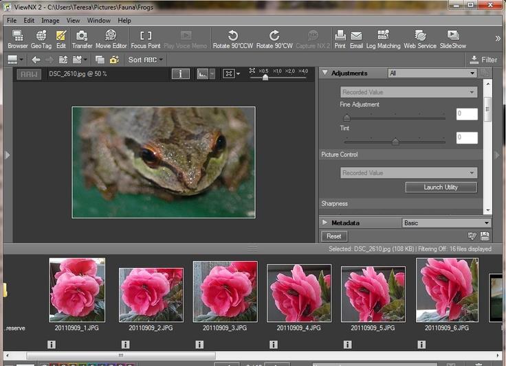 How to Use Nikon ViewNX 2: Nikon Viewnx, Photo Ideas, Conspiculously Courtney, Nikon D3300