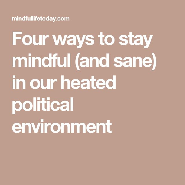 Four ways to stay mindful (and sane) in our heated political environment