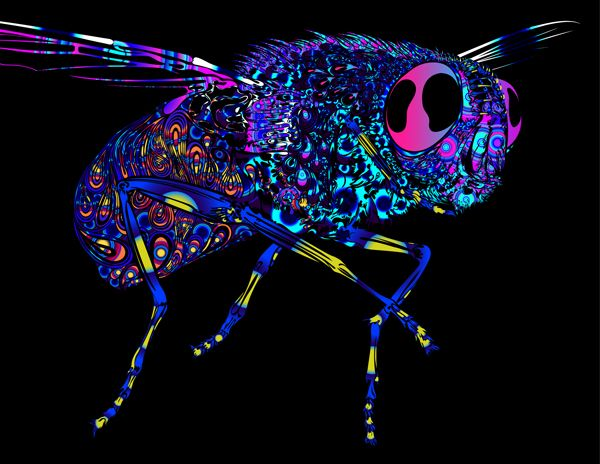 Check out this @Behance project: \u201cOne Army Fly - UV Light - by Zoombies\u201d https://www.behance.net/gallery/33924678/One-Army-Fly-UV-Light-by-Zoombies