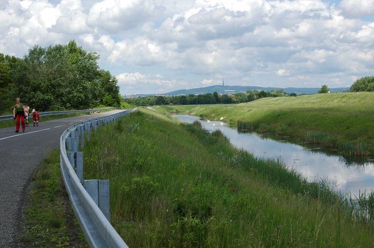Dunajska hradza