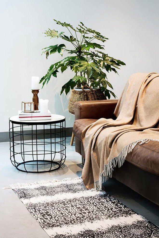 Las 25 mejores ideas sobre mantas para sof en pinterest for Cuales son los mejores sofas