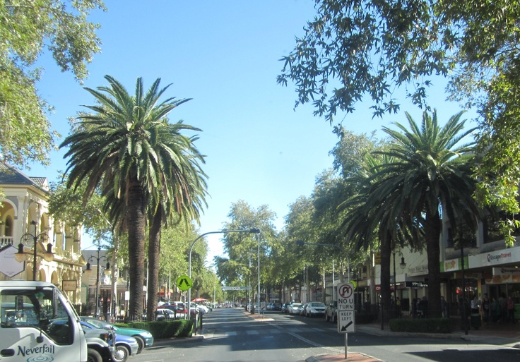 Love a main street with trees .. Tamworth NSW