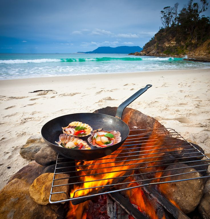Gourmet meals served on walking and camping holidays in Tasmania.