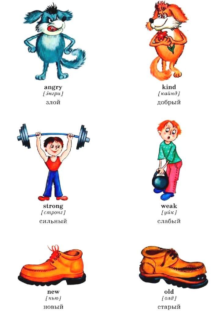учить английские прилагательные в картинках отличие