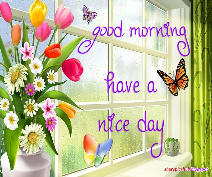 Good Morning Greetings | Labels: Good Morning Pics , Greeting Cards , Pics For Facebook