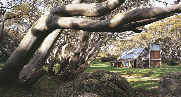 Built in 1889, the oldest complete structure in Alpine National Park is Wallace's Hut in Victoria.