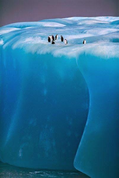 Antarctica ~ Photos Hub