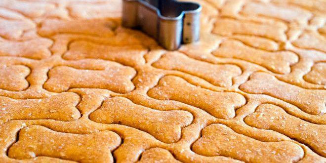 Hai mai prepato qualche ricetta fatta in casa  per il tuo pet? Qui trovi quella per i biscotti!