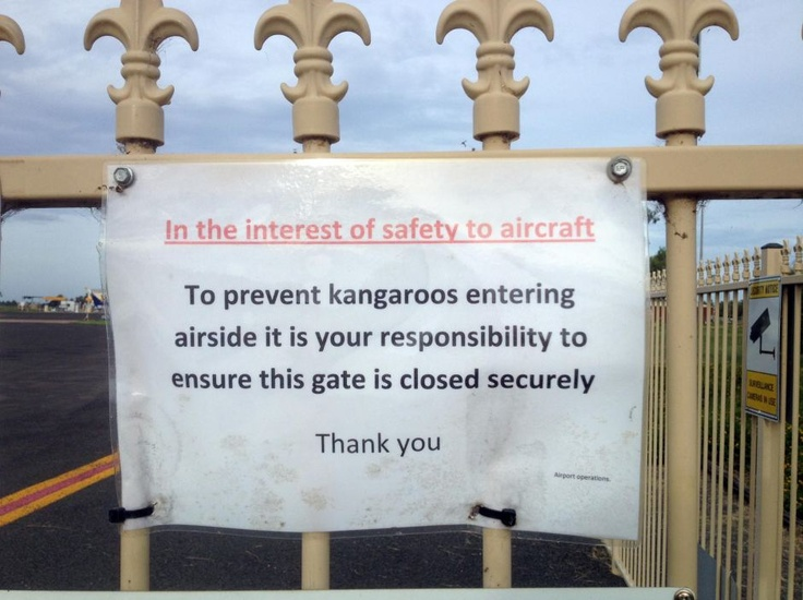 The Flying Kangaroo excepted... Sign at Bourke Airport in northern NSW