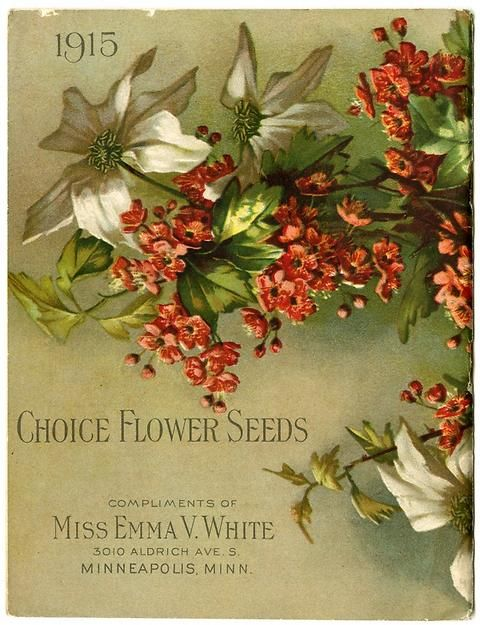 "Aha! The text is found on the back cover of Emma V. White's 1915 catalog. It is joined by a branch of Clematis Henryl and English Hawthorn. Emma V. White called herself the ""North Star Seedswoman"" and had her first mailing in 1896. She produced catalogs with colorful, hand painted covers aimed at woman customers."