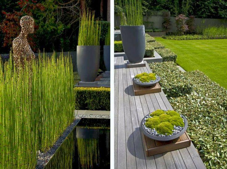 Jardin contemporain for Jardin contemporain