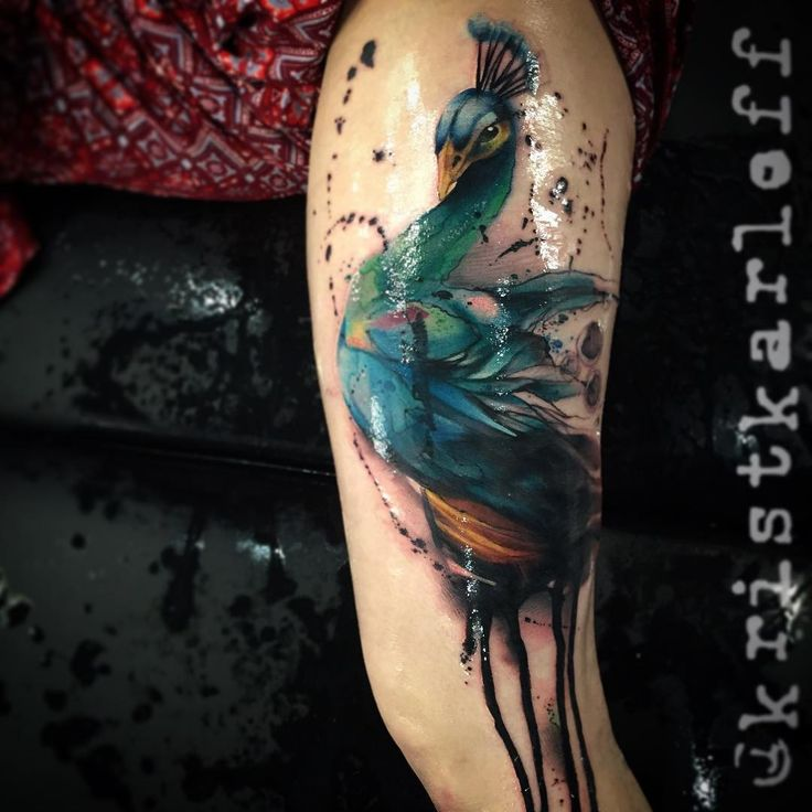 207 best tattoo peacock images on pinterest peacock for Tattoo lafayette indiana
