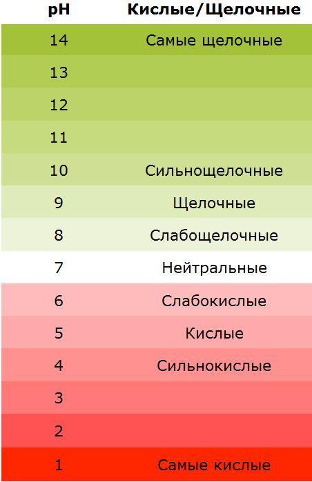 Узнайте, как пройти простой тест и выяснить ваш уровень pH