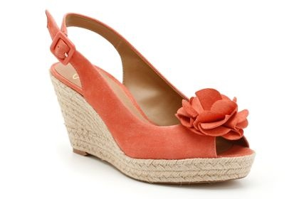 Coral wedges from Clarks