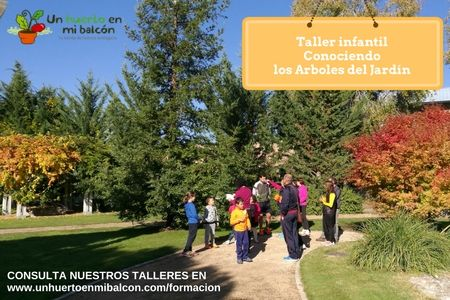 Taller para niños Conociendo los árboles del jardín botánico http://www.unhuertoenmibalcon.com/formacion/2015/07/talleres-infantiles-de-huerto-urbano/