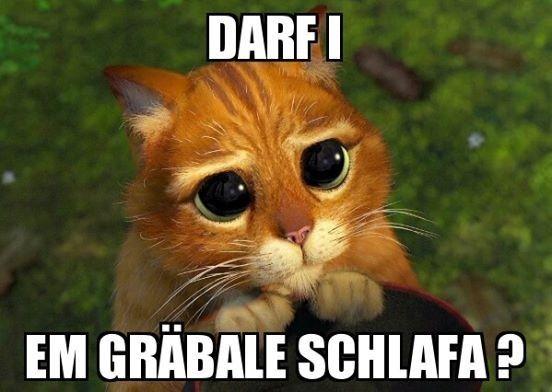 """Die Facebook-Seite <a href=""""https://www.facebook.com/schwobamemes/timeline"""" target=""""_blank"""">Schwobamemes</a> bastelt die großartigsten Memes uff Schwäbisch."""
