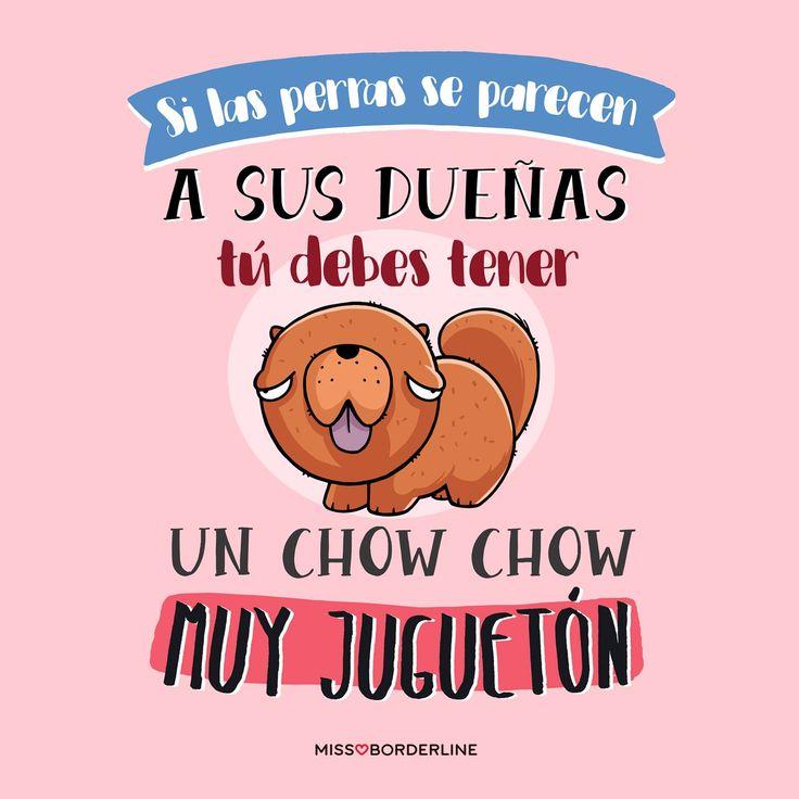 Si las perras se parecen a sus dueñas, tú debes tener un chow chow muy juguetón. #frases #divertidas #graciosas #funny #quotes