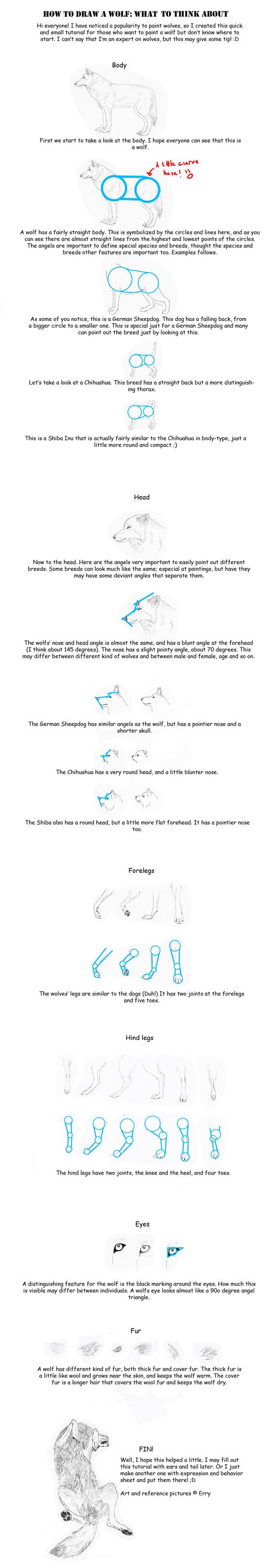 How To Draw A Wolf Tutorial By Erryiantart On @deviantart