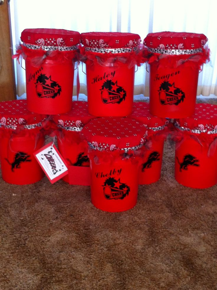 Cheer Buckets for CYF Jr. Pee Wee Go Lions