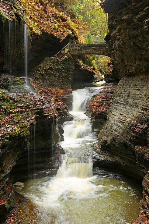 Citaten Seneca Falls : Watkins glen state park new york located south of