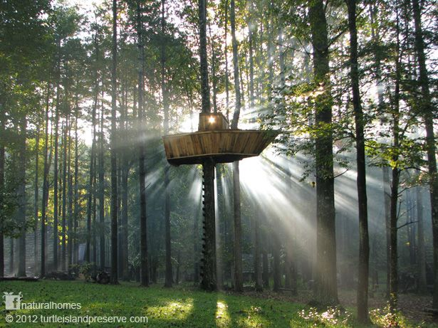 This is the treehouse at Turtle Island Preserve, an Appalachian farm in Boone, NC, USA with lots of unique treasures to share with the world. It helps young and old to rediscover natural building and living skills, helping to make our world sustainable. More wonderful natural homes each day on the Natural Homes Timeline www.naturalhomes.org/timeline.htm