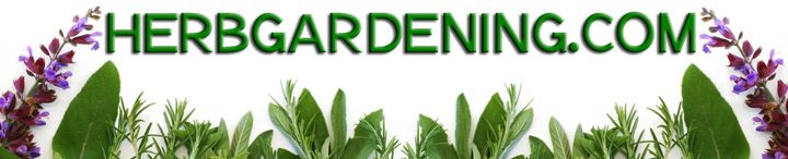 At HerbGardening.com, you'll find a wealth of information on how to grow fresh kitchen and medicinal herbs in your backyard, on your balcony, deck or patio, even indoors!